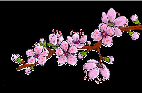 okiya-branche